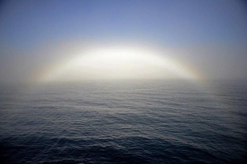large_Fogbow.jpg