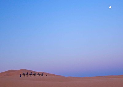 Camel train under full moon
