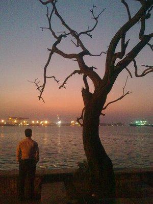 Cochin_eve.jpg