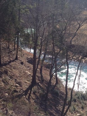 Arkansas Trip January 2014