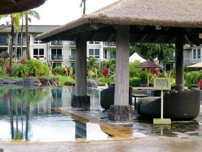 Poolside Palapa