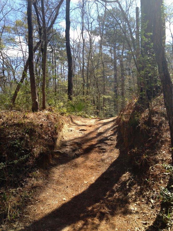 Hiking in Hunstville State Park