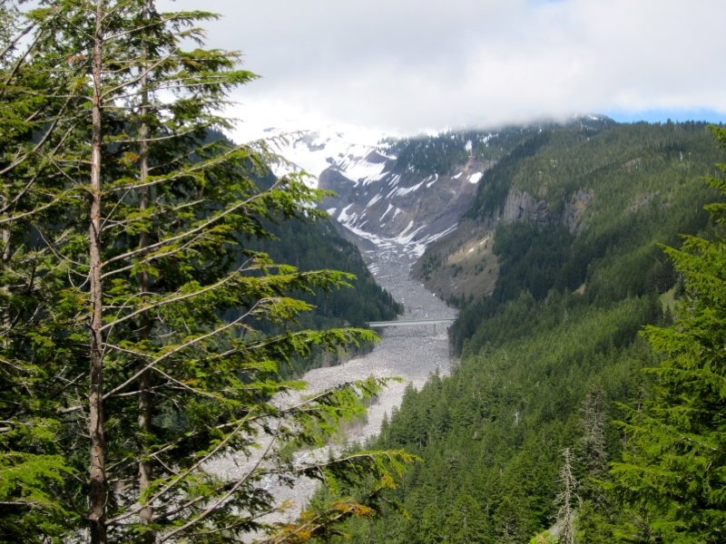 Mount Rainier National Park - Nisqually Glacier