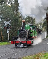 Puffing Billy at the crossing