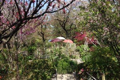 4-11r Shukkeien Garden (15)