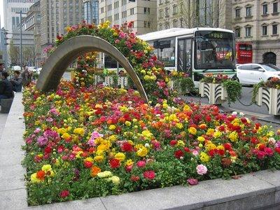 4-4. 8 Shanghai pretty flowers
