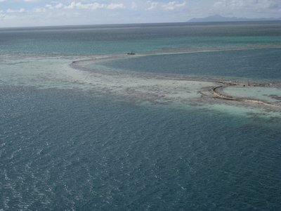 5-26 (11) Coral Reefs