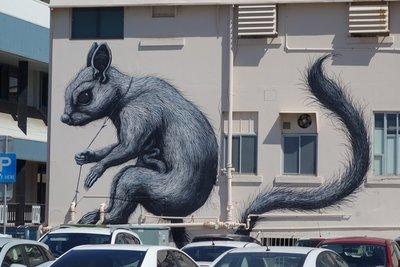5-5r (1) Wall Art Townsville, Australia