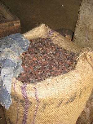 2-1.19 Cocoa beans