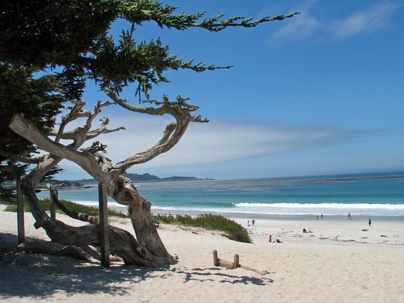 large_carmel-beach.jpg
