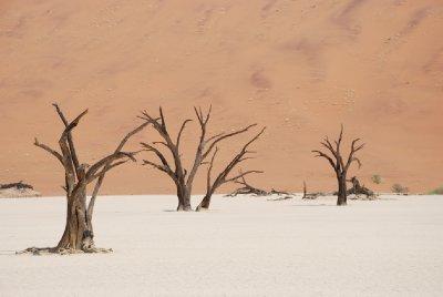 Sossuvlei Dunes