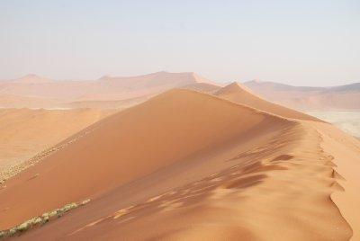 Deadvlei dunas