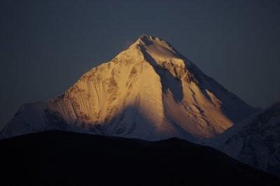 Dhaulagiri at Dawn