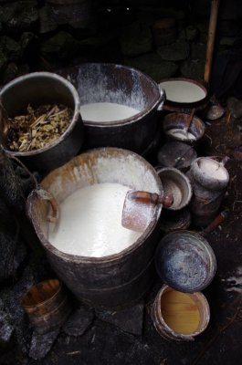 Vats of yak curd at a yak herder's hut in the Ganesh Himal