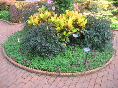 Missouri Botanical Garden 5