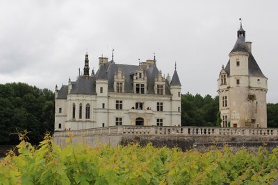 Chateau Chenonceau - Grape Vines