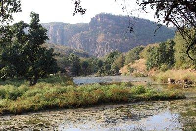 Ranthambore Preserve