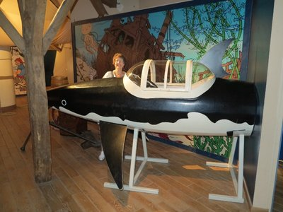 TinTin - Sue with Shark sub
