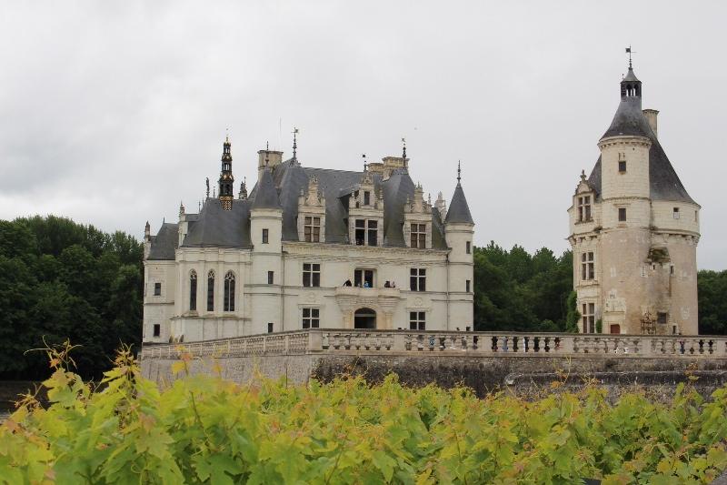Chateau Chenonceau - Grape Vines