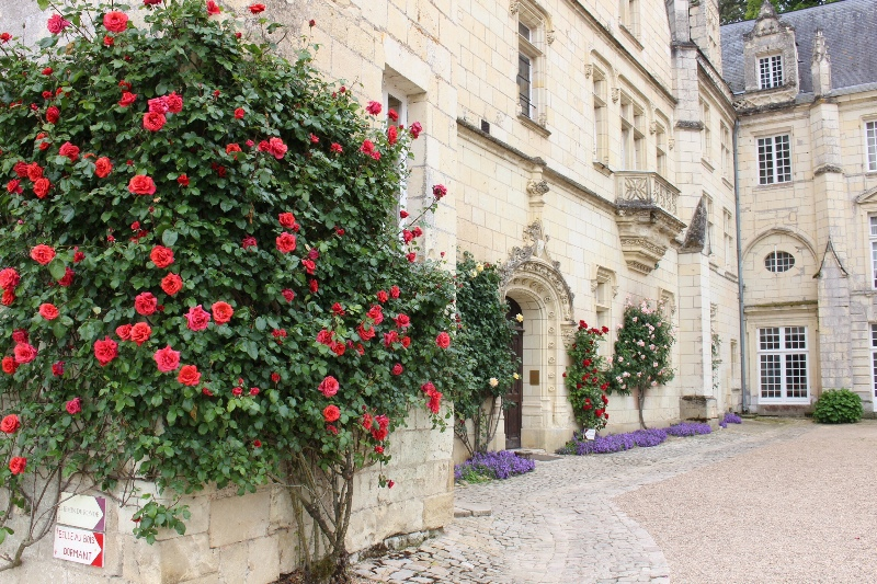 Chateau Usse - Courtyard Flowers