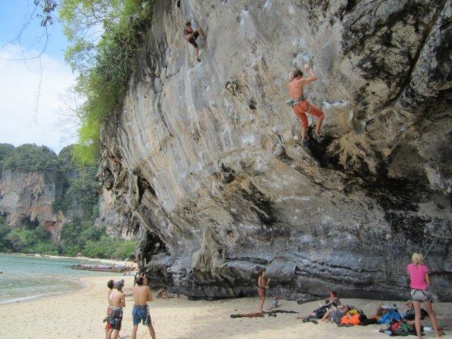 Tonsai Climber's Wall