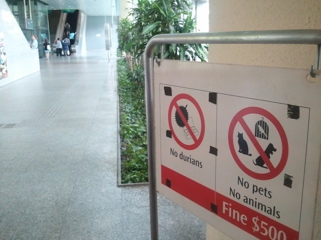 No Durians Sign