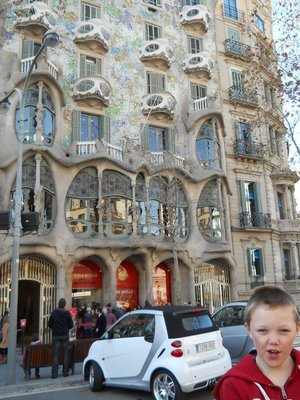 Angus enjoying a Gaudi creation