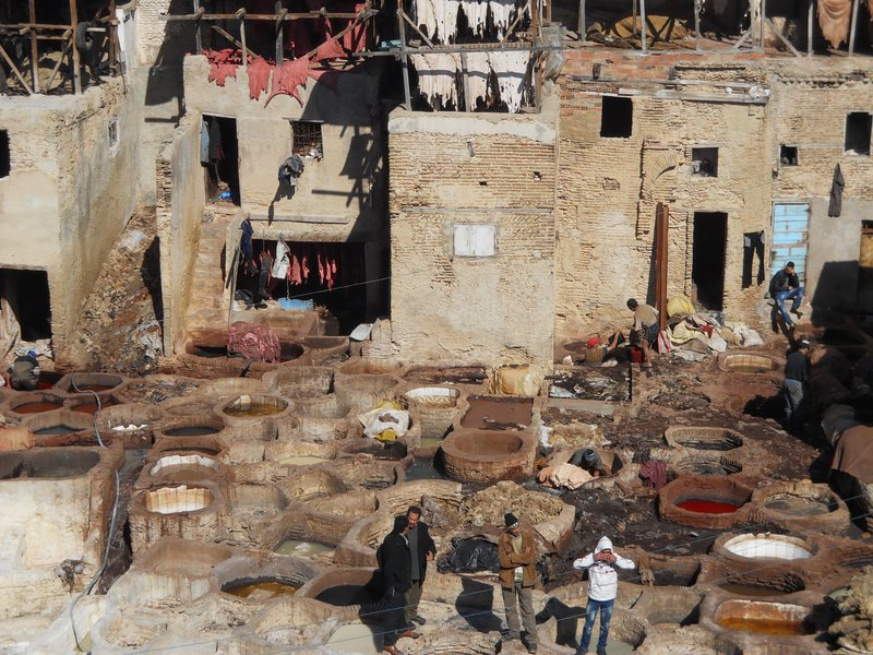 Men at work in the Fes tannery