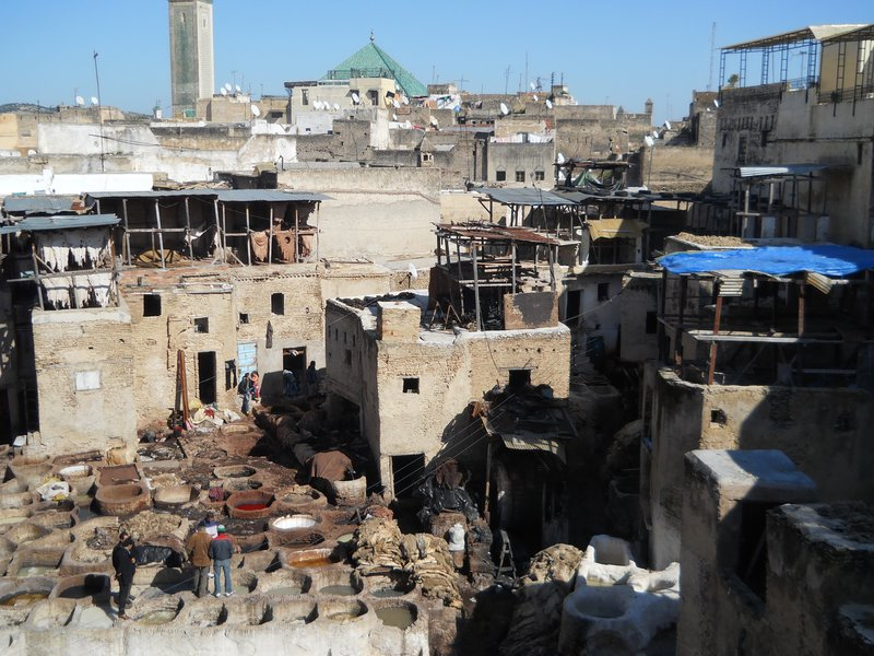 Our first view of the Fes tannery...unbelievable!