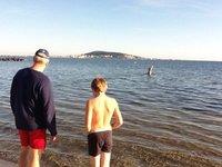December 23 swim in Mèze!