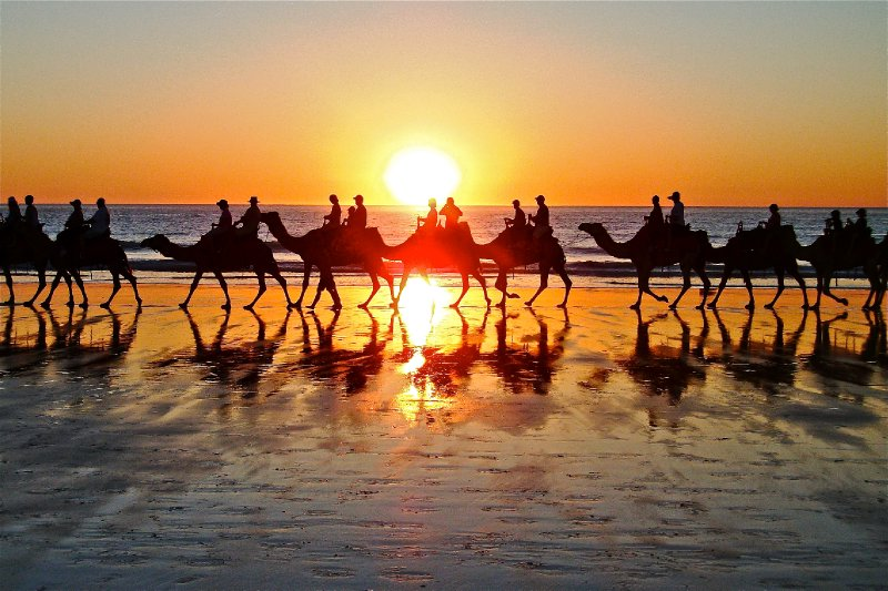 Cable Beach with Camels