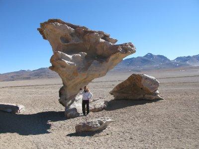 Tone og den store steinen