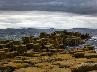 Basalt columns in the Isle of Staffa