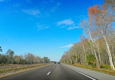 Driving to Orlando