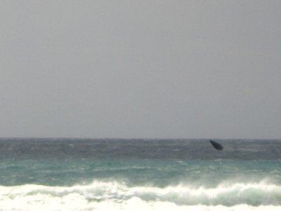 Fraser_Island_087.jpg