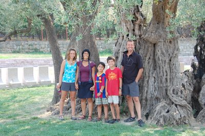 Olive lovers unite ... The oldest olive tree in the world.  Photo taken in Montenegro...Stars Maslina