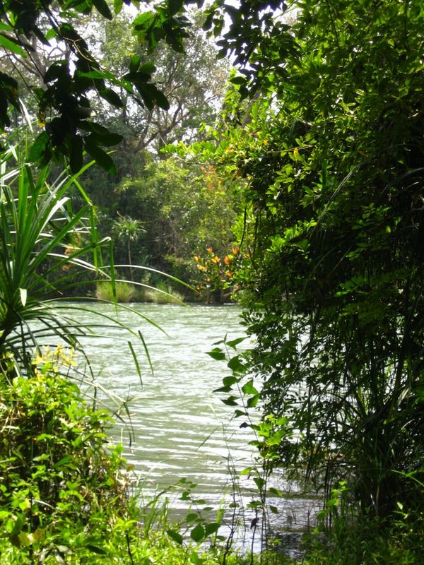 Garden of Eden - Dandeli