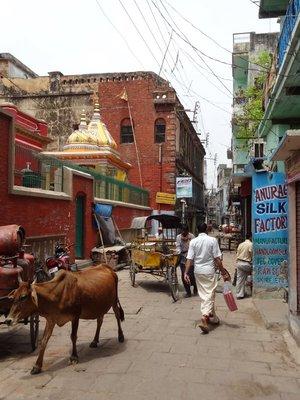 Rue de Varanasi