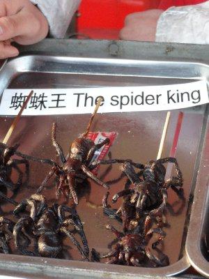 Une p'tite araignée ??
