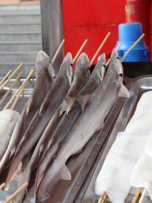 Bébés requin à la broche