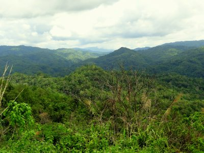 Paysage entre Chiang Mai et Pai