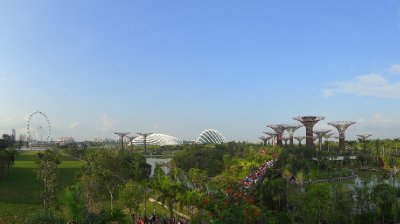 Vue sur le Garden by the bay