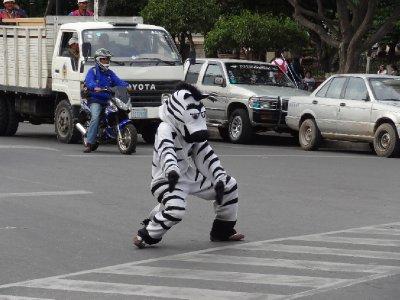 En Bolivie il y a des Zèbre pour aider les pietons à traverser <img class='img' src='http://www.travellerspoint.com/Emoticons/icon_smile.gif' width='15' height='15' alt=':)' title='' />