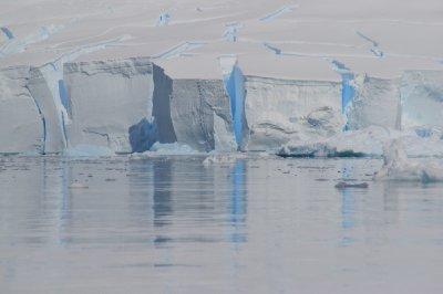 Glacier - Paradise Bay
