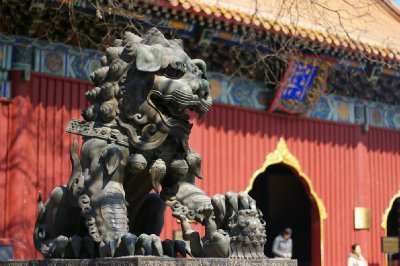 Lion Gardien - Lama Temple