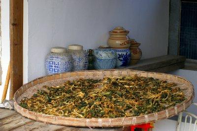 Séchage du thé