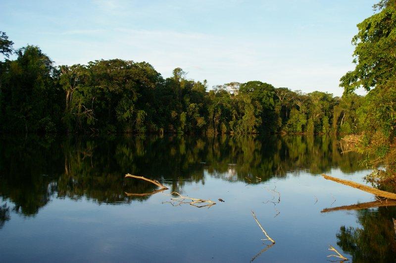 Lac salvadore - parc Manu