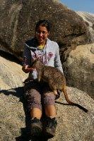 Fiona nourrit les wallabys