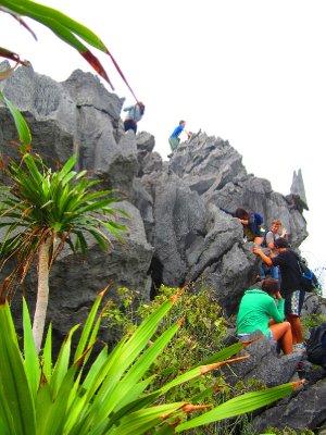 Treacherous Climb
