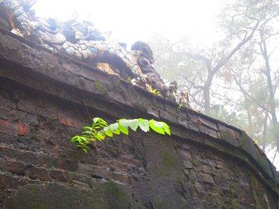 Nature Prevails At Tu Duc Tomb